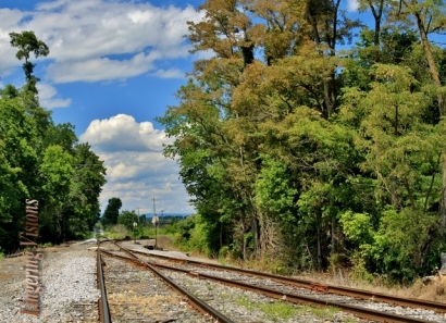 Train Tracks Bisect(w)
