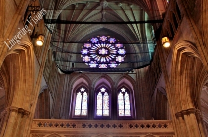 Stained Glass Windows of the National Cathedral(w)# (16)