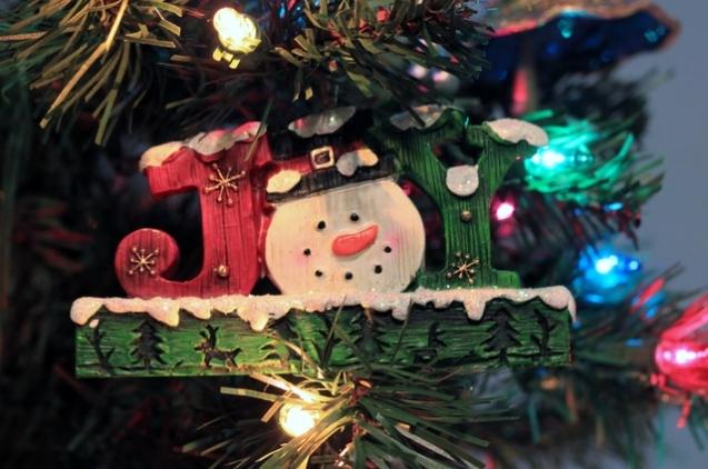 Ornaments(c)# (9)