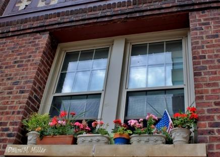 Window boxes(w)# (6)
