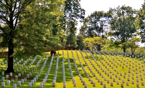 Culpeper National Cemetery(w)# (1)