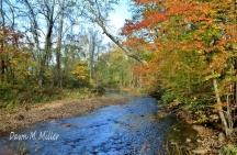 Autumn on Passage Creek(w)
