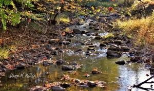 This is Cedar Creek