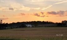 sunset-on-the-prairie