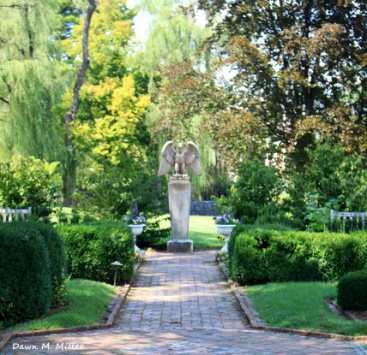 Summer Garden at MSV (2)