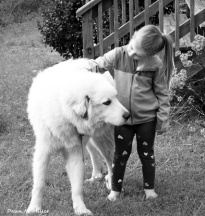 Little Girls and Doggies in Black and White# (2)